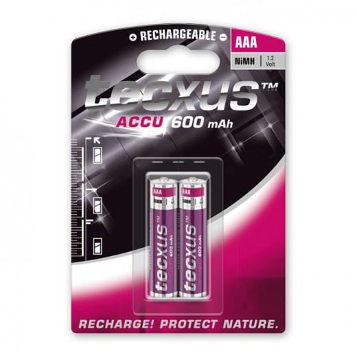 Tecxus Micro AAA NiMH Akku 1,2 Volt 600 mAh 2er Pack Blister