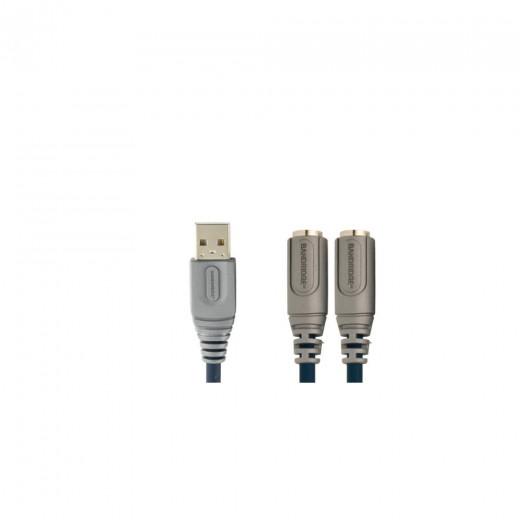 Bandridge CPA4002 Adapter USB-A Stecker auf 2x 6pin miniDIN Kupplung